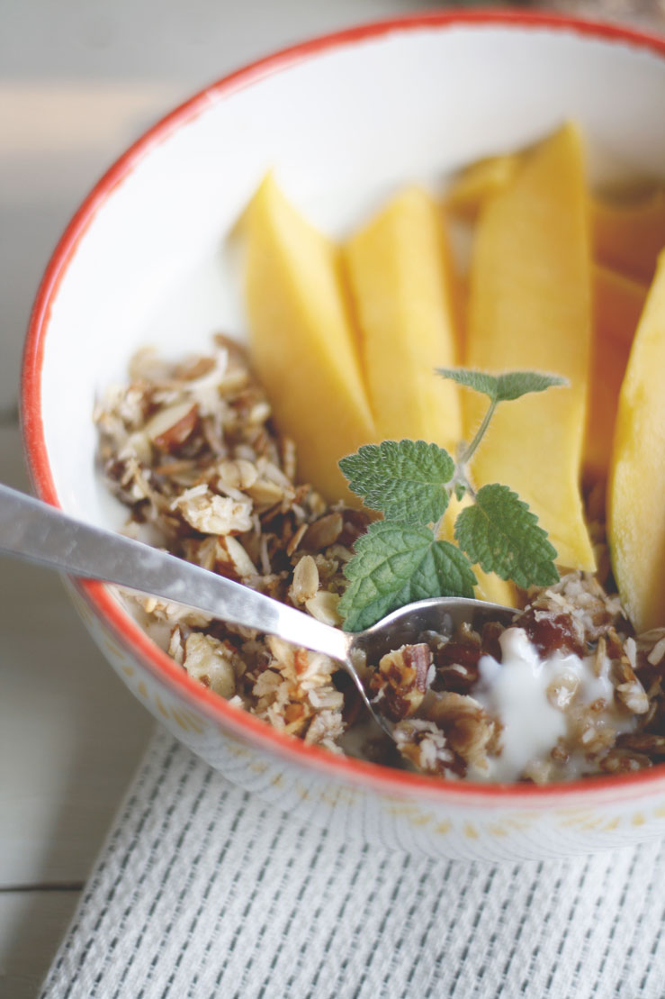 Granola mit Kokos und Datteln