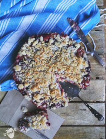 Veganer Rhabarberkuchen mit Streusel und Pudding. Saftiger Rhabarberkuchen mit Kokos-Streuseln. Einfach und lecker. Kuchenrezept für die Familie.