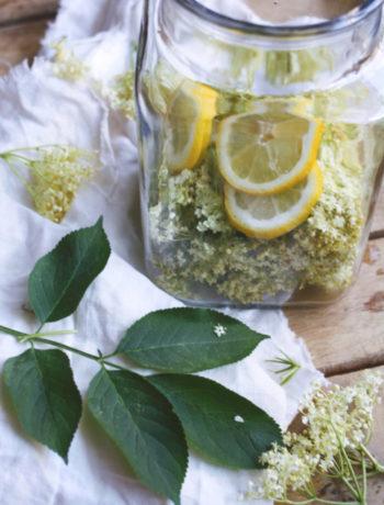 Rezept einfacher Holunderblütensirup ohne Zitronensäure selber machen. Holunderblütensirup selber machen.