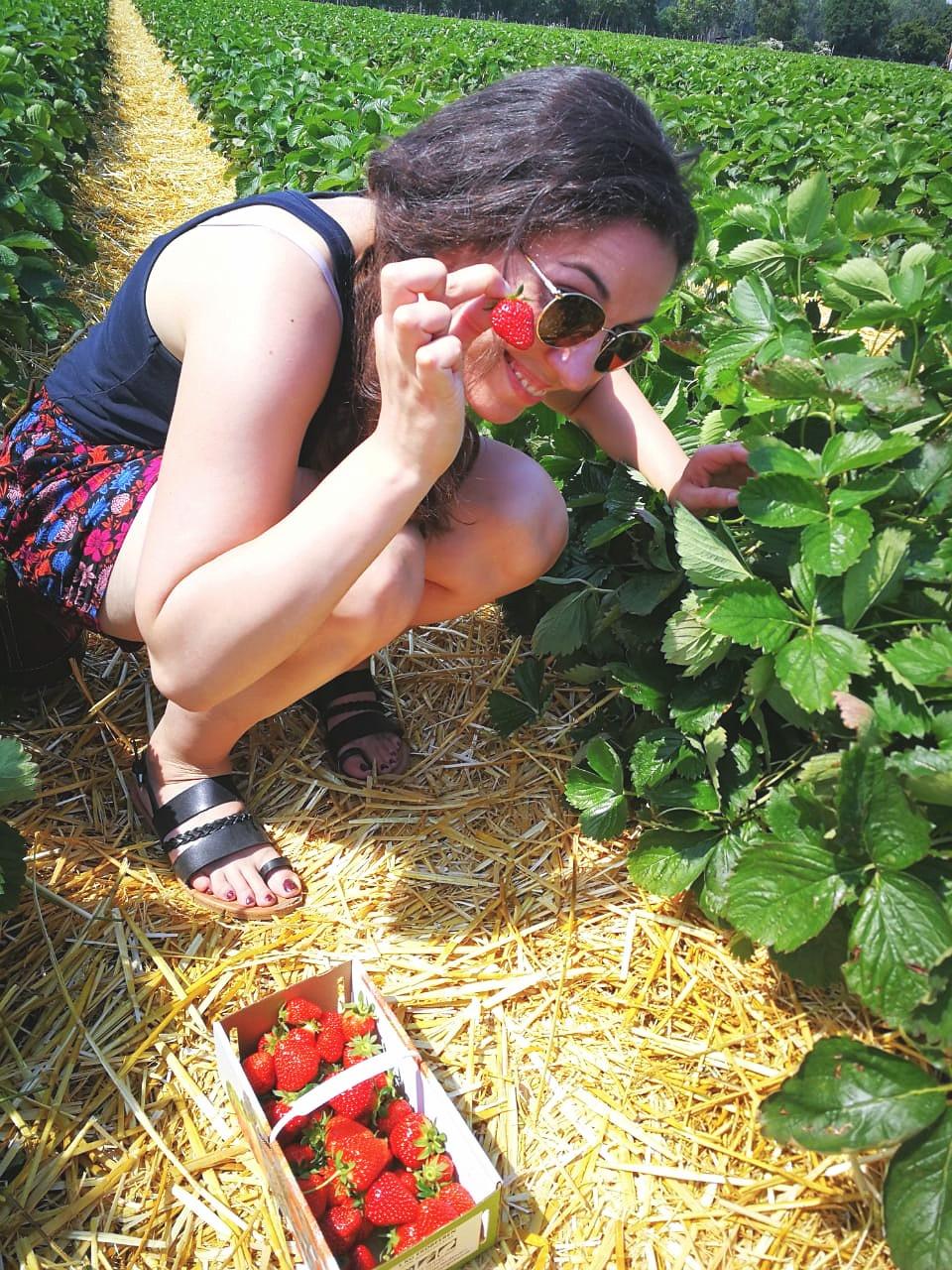 Erdbeerige Grüße!
